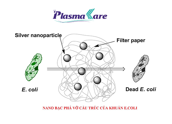 Plasma Nano Bạc – thành phần đột phá trong xịt rửa tay khô PlasmaKare 1